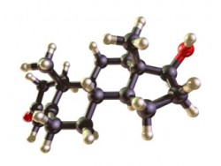 what is testosterone and how its produced in the male body